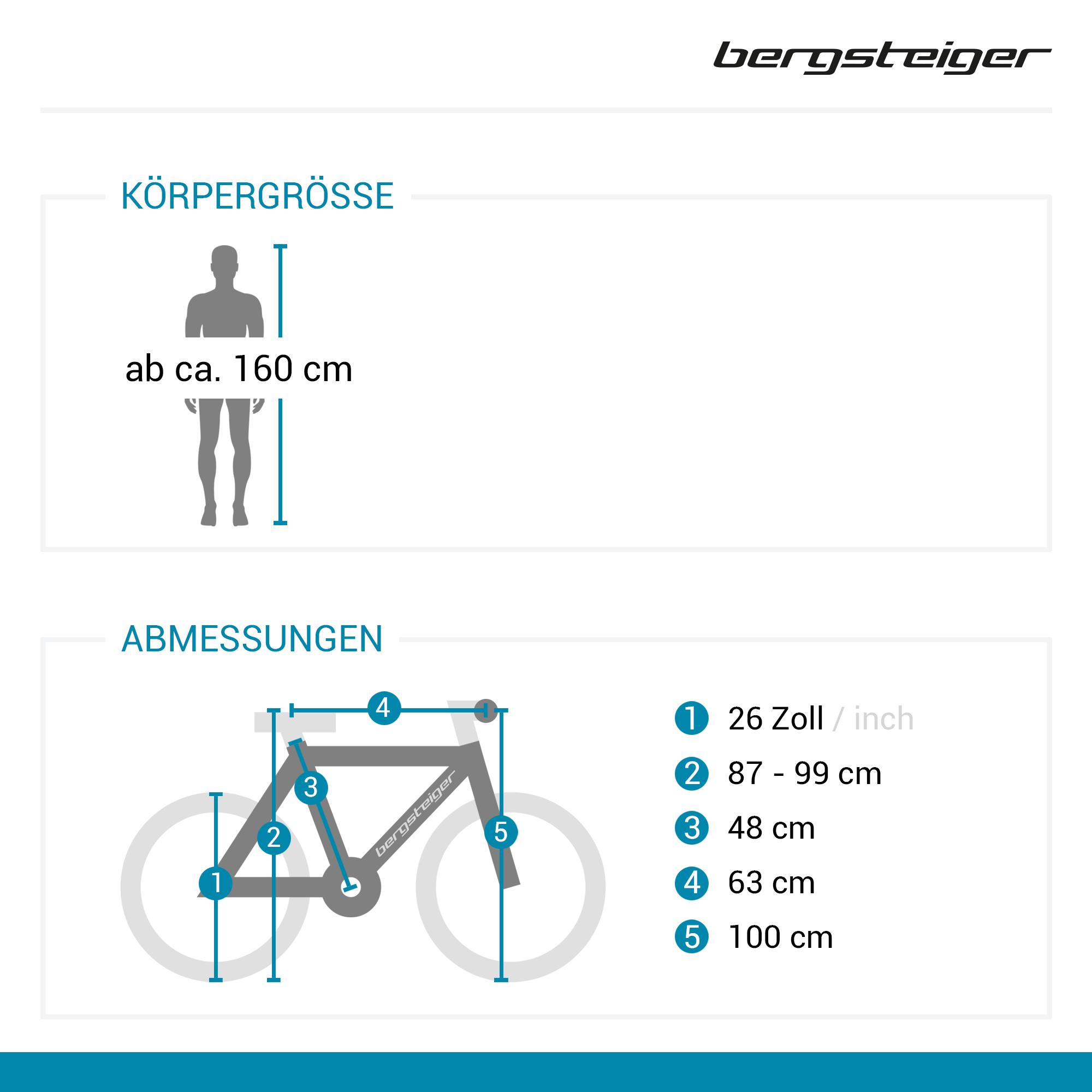26″ Mountainbike Phoenix – Bergsteiger Fahrräder   Mountainbikes ...